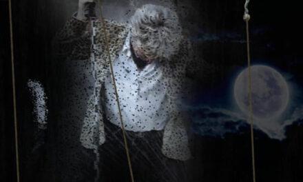 Rod Stewart Tribute feat JAMES FREW